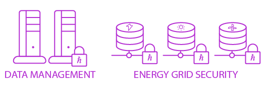 energy grid security