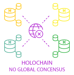 holochain concensus